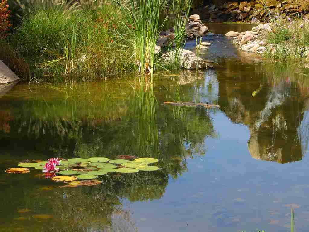 Protect the beauty of your pond with pond liner from Cover-Tech Inc.