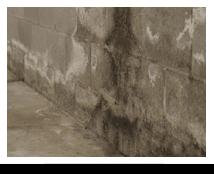 Waterproof Basement Walls Buffalo, NY
