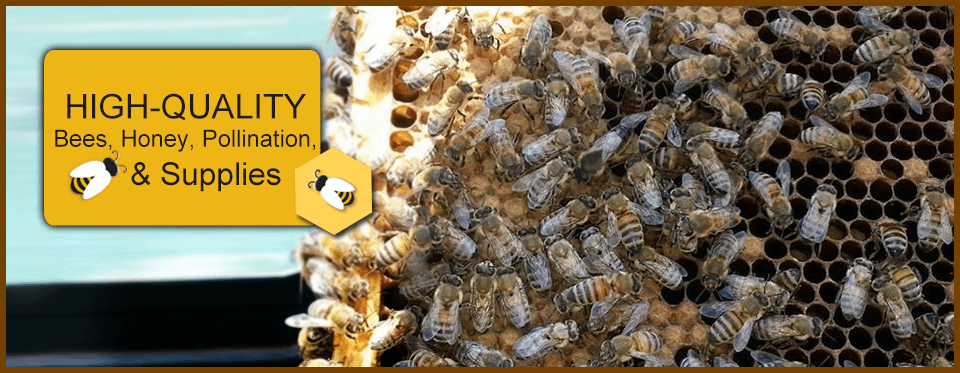 Rock Hill Honey Bee Farms in Stafford VA 22556