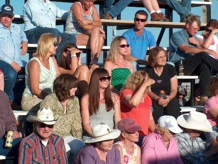 cmr stampede rodeo