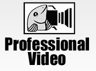 logo professional video