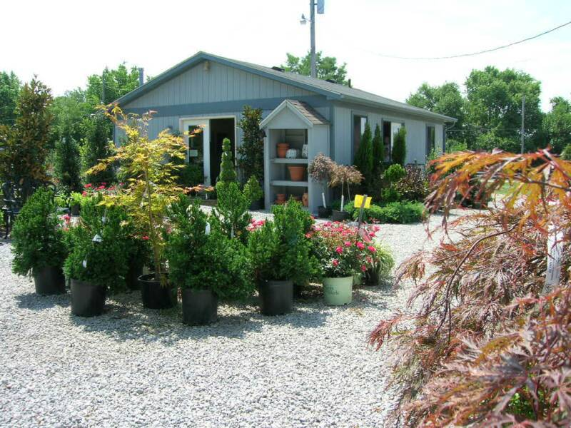 Top nursery center with a wide variety in Nicholasville, KY